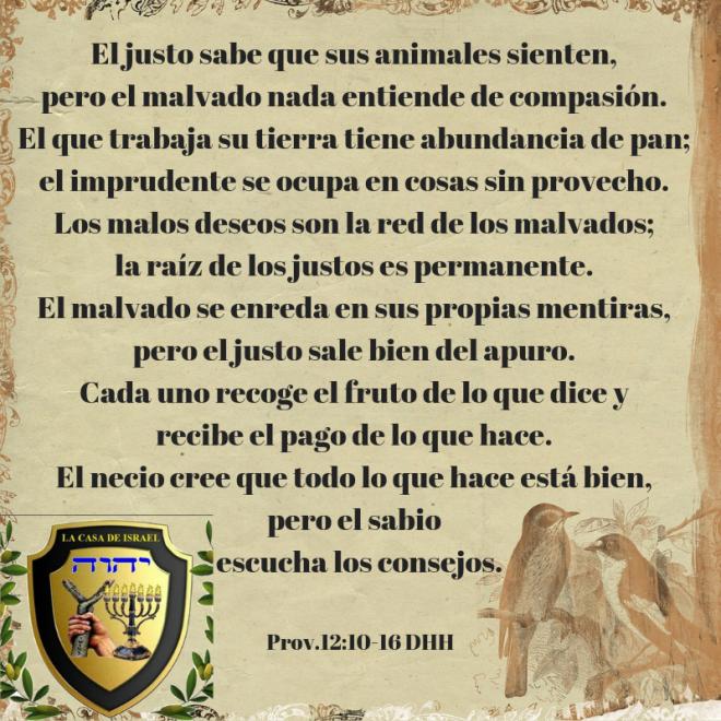 Prov.12_10-15 Casa de Yisrael