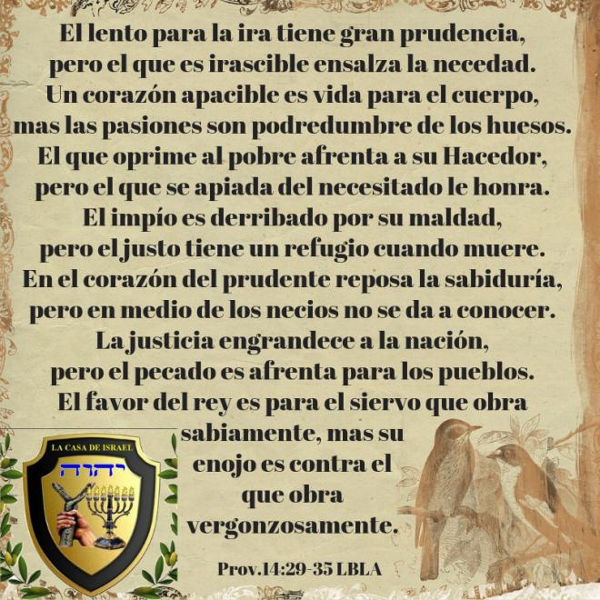 Prov.14_29-35 Casa de Yisrael