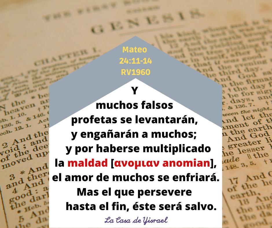Mateo 24